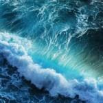 Sea00061